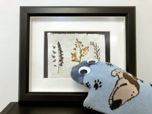 Sock puppet next to a picture frame.